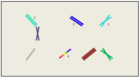 Taking a page from Olivia's book and making my fence diagrams in PowerPoint now. SO FANCY AND PROFESSIONAL.